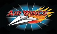 In addition to the game Eternal Legacy HD for Android phones and tablets, you can also download Air Wings for free.