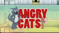In addition to the best Android game Angry cats. Cats vs mice for Galaxy Gio download other free Samsung Galaxy Gio games for Android.