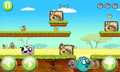 Angry Piggy