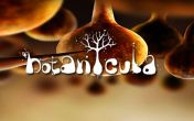 In addition to the game Fairway Solitaire for Android phones and tablets, you can also download Botanicula for free.