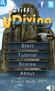 In addition to the game Magicka for Android phones and tablets, you can also download Cliff Diving 3D for free.