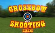 In addition to the game Bladeslinger for Android phones and tablets, you can also download Crossbow shooting deluxe for free.