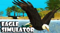 In addition to the game Dogfight for Android phones and tablets, you can also download Eagle simulator for free.