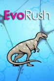 In addition to the game Bubble Maniac for Android phones and tablets, you can also download Evo rush for free.