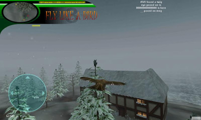 fly like a bird online game