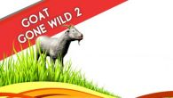 In addition to the game Chicken Invaders 4 for Android phones and tablets, you can also download Goat gone wild 2 for free.