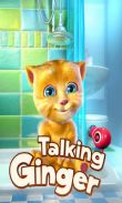 In addition to the game Pou for Android phones and tablets, you can also download Talking Ginger for free.
