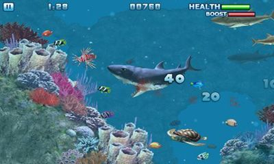 Hungry Shark - Part 3 - Android game screenshots. Gameplay Hungry ...