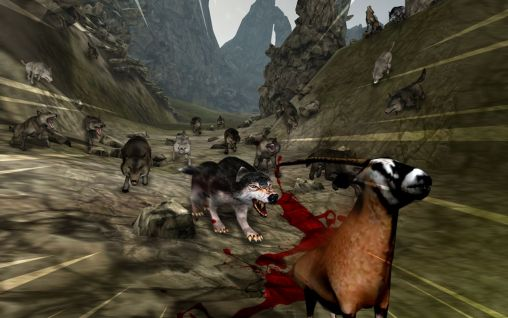 wolf games online no download