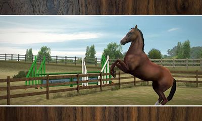 Screenshots of the My Horse for Android tablet, phone.