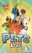 In addition to the game C.H.A.O.S for Android phones and tablets, you can also download Pets Live for free.