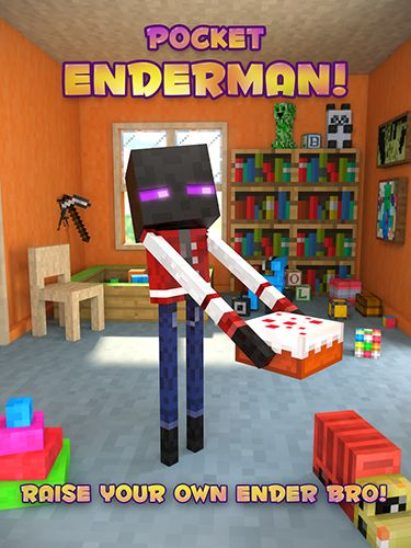 Screenshots of the Pocket Enderman for Android tablet, phone.