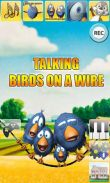 In addition to the game  for Android phones and tablets, you can also download Talking Birds On A Wire for free.