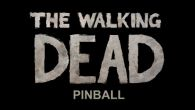 In addition to the game Darts for Android phones and tablets, you can also download The walking dead: Pinball for free.