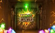 In addition to the game Real Football 2013 for Android phones and tablets, you can also download Tomb Jewels for free.