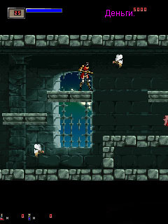 Mobile game Castlevania Symphony of the Night - screenshots. Gameplay Castlevania Symphony of the Night