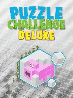 Mobile game Puzzle Challenge Deluxe - screenshots. Gameplay Puzzle Challenge Deluxe