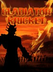In addition to the free mobile game Gladiator Cricket for C2-00 download other Nokia C2-00 games for free.
