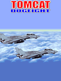 Mobile game Tomcat Dogfight - screenshots. Gameplay Tomcat Dogfight