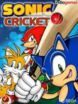 In addition to the free mobile game Sonic Cricket for Champ Neo Duos C3262 download other Samsung Champ Neo Duos C3262 games for free.