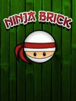 In addition to the  game for your phone, you can download Ninja Brick for free.