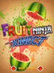 In addition to the  game for your phone, you can download Fruit ninja: Kinect for free.