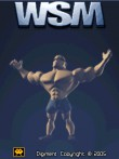 In addition to the free mobile game World Strongest Man (WSM) for 3310 download other Nokia 3310 games for free.