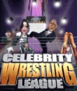 In addition to the  game for your phone, you can download Celebrity Wrestling League for free.