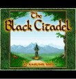 In addition to the free mobile game Black Citadel for GT-C3530 download other Samsung GT-C3530 games for free.