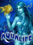 In addition to the free mobile game AquaLife X: Kingdom of Love for B100 (CDMA) download other Samsung B100 (CDMA) games for free.