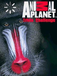 Download free mobile game: Animal Planet Trivia Challenge - download free games for mobile phone