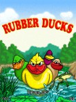 In addition to the free mobile game Rubber Ducks for 500 download other Nokia 500 games for free.