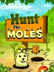 In addition to the  game for your phone, you can download Hunt The Moles for free.