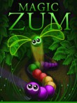In addition to the  game for your phone, you can download Magic Zum for free.