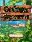 In addition to the free mobile game Collect fruits for C2-00 download other Nokia C2-00 games for free.
