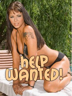 Download free mobile game: Help Wanted! Slider Bikini - download free games for mobile phone
