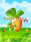In addition to the  game for your phone, you can download Guard Radish for free.