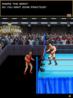Mobile game WWE Legends of WrestleMania - screenshots. Gameplay WWE Legends of WrestleMania