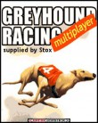 In addition to the  game for your phone, you can download Greyhound racing multiplayer for free.