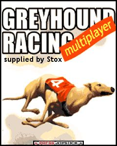 Download free mobile game: Greyhound racing multiplayer - download free games for mobile phone