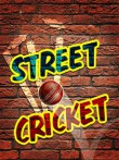 In addition to the  game for your phone, you can download Street cricket for free.