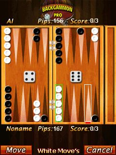 backgammon gaming wonderland