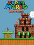 In addition to the  game for your phone, you can download Super Mario rescue princess for free.