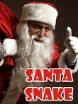 In addition to the  game for your phone, you can download Santa snake for free.