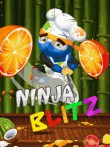 In addition to the  game for your phone, you can download Ninja blitz for free.