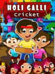 In addition to the  game for your phone, you can download Holi galli cricket for free.
