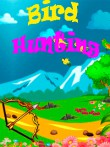 In addition to the free mobile game Bird hunting for T715 download other Sony-Ericsson T715 games for free.