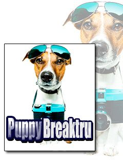 Download free mobile game: Puppy breaktru - download free games for mobile phone