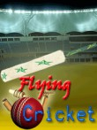 In addition to the  game for your phone, you can download Flying: Cricket for free.
