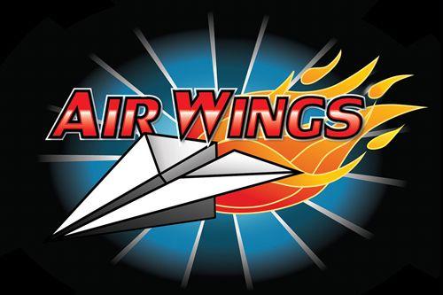 Download Air wings iPhone free game.